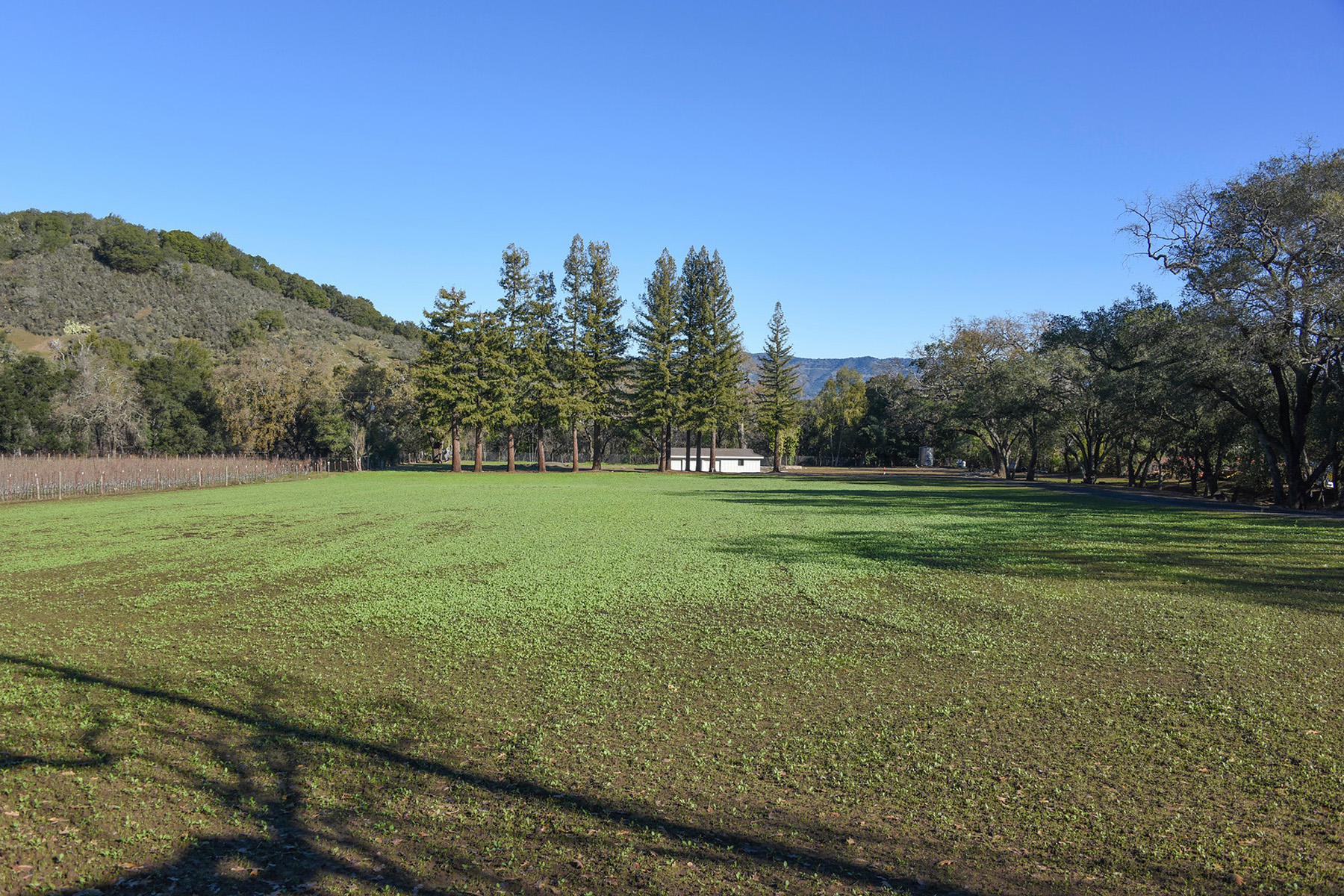 Property For Sale at 4142 Dry Creek Rd, Napa, CA 94558