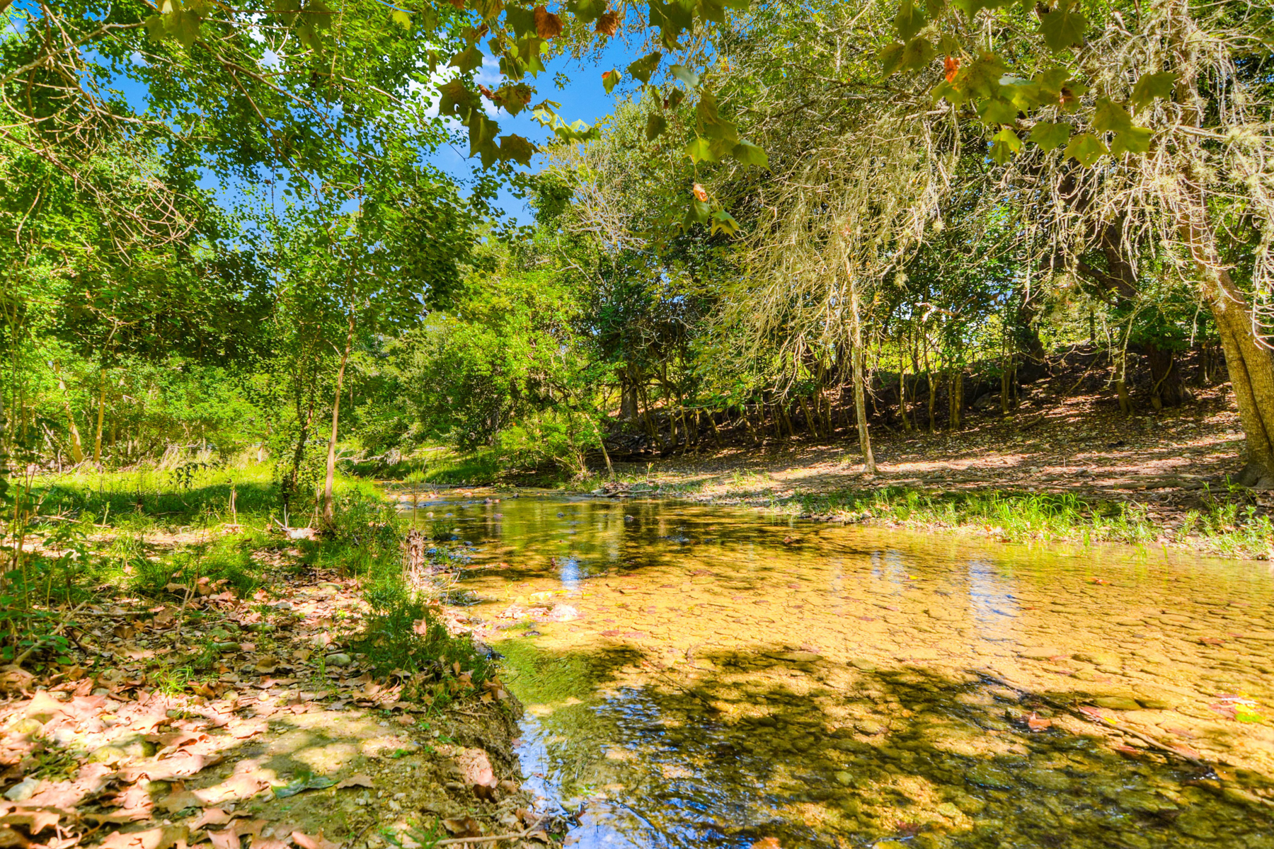Additional photo for property listing at Half Acre Prime Lot in Sunset 621 W San Antonio Ave Boerne, Texas 78006 Estados Unidos
