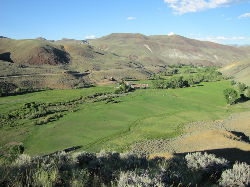 Additional photo for property listing at Challis Creek Ranch 8849 Challis Creek Road Challis, Idaho 83226 Estados Unidos