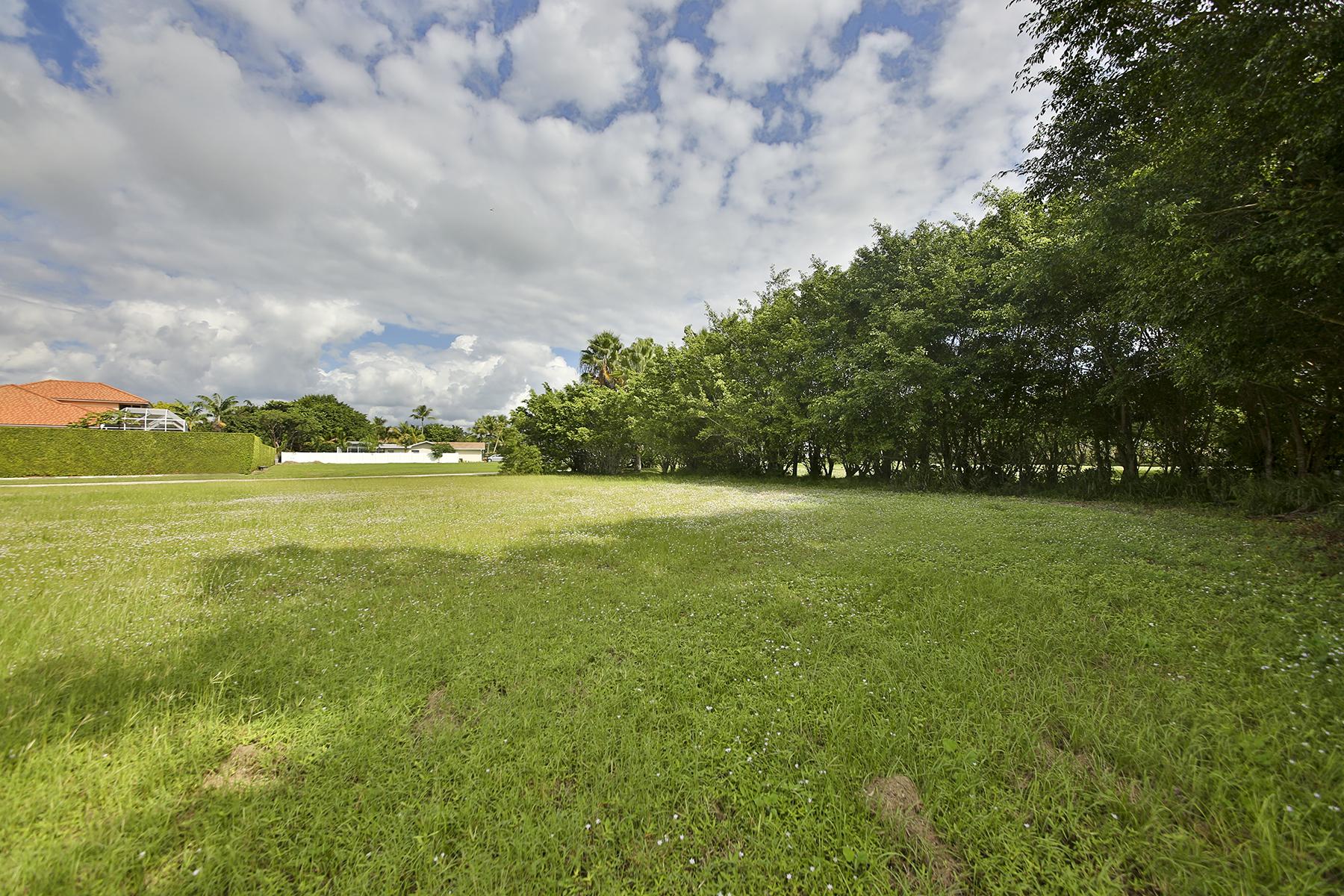 Arazi için Satış at MARCO ISLAND - ELK CIRCLE 421 Elk Cir Marco Island, Florida, 34145 Amerika Birleşik Devletleri