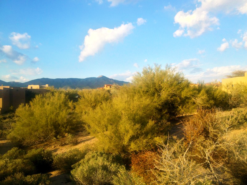 Property For Sale at Custom Homesite - Desert Mountain - Eagle Feather