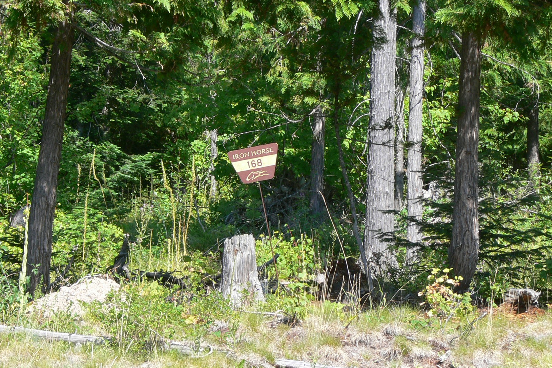 Land for Sale at 3024 Iron Horse Drive, Lot 168 3024 Iron Horse Dr Whitefish, Montana, 59937 United States