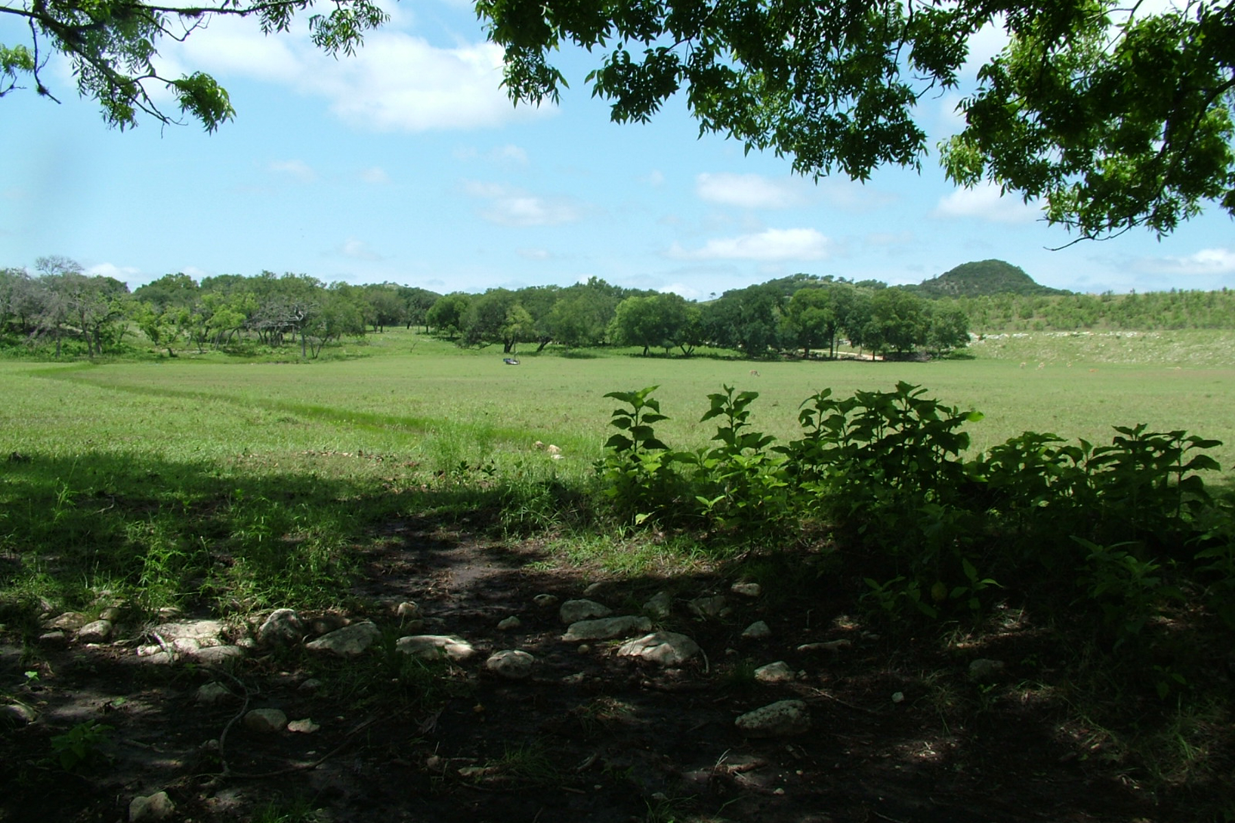 Additional photo for property listing at Water Property on 86+- acres in Boerne 242 State Highway 46 W Boerne, Texas 78006 Estados Unidos