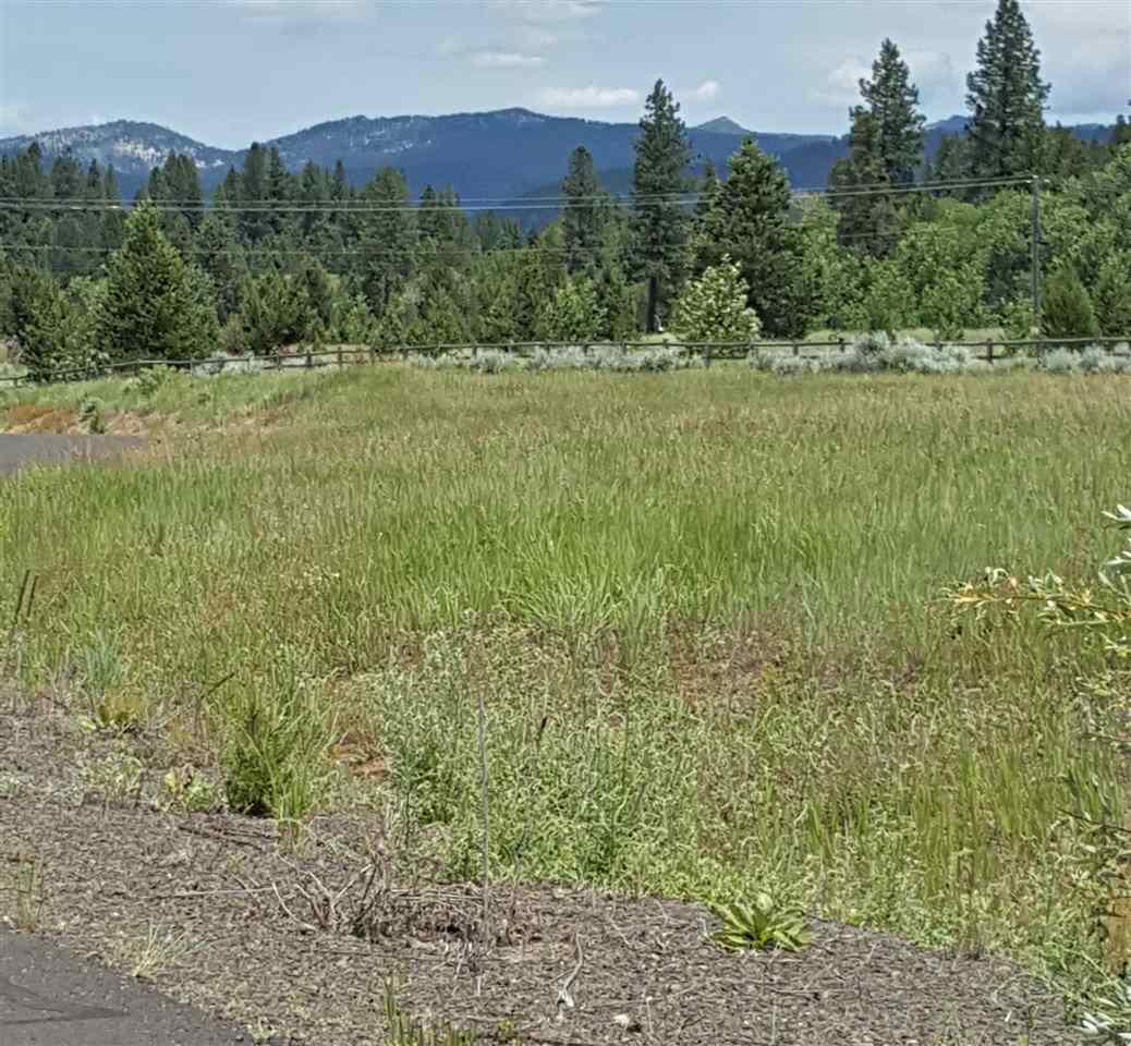 Terrain pour l Vente à XX Raptor Loop #2, Mccall McCall, Idaho, 83638 États-Unis