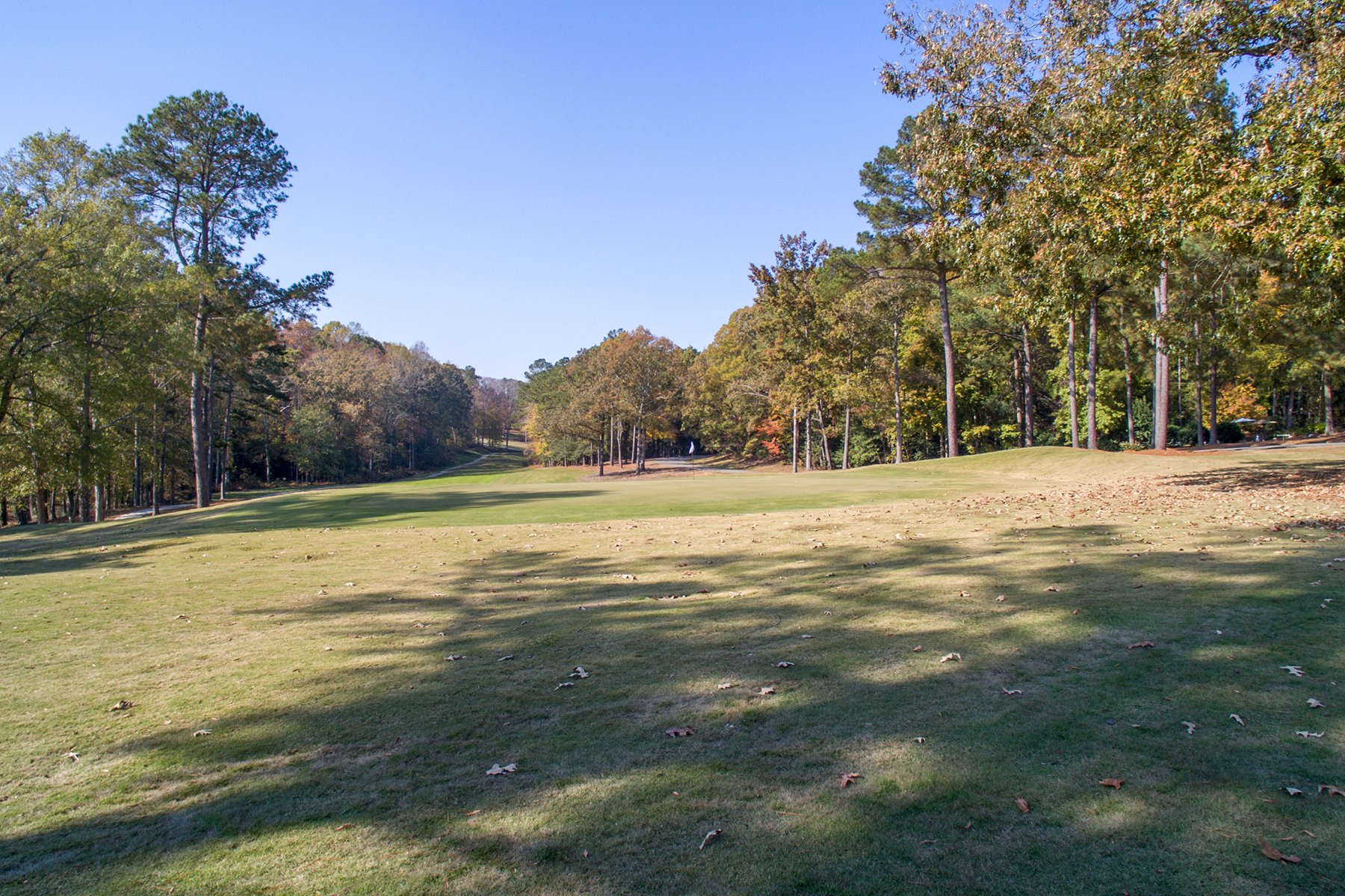 Additional photo for property listing at SANFORD 9999  Country Club Dr,  Sanford, North Carolina 27332 United States