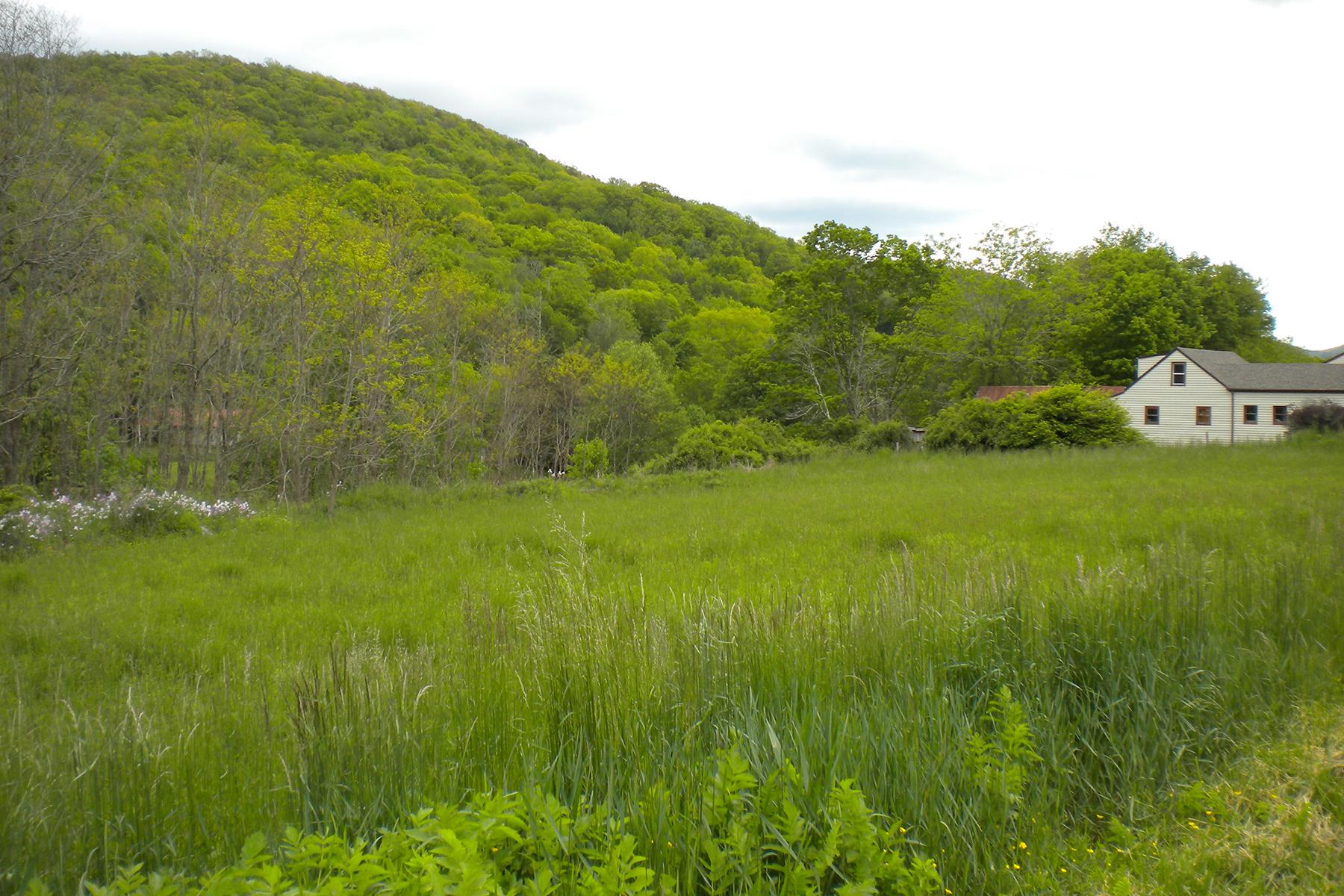 Additional photo for property listing at TBD Balm Highway (sr 194), Banner Elk, NC 28604 TBD  Balm Highway (sr 194),  Banner Elk, North Carolina 28604 United States