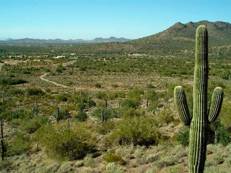 Property For Sale at Mountain Preserve Custom Estate Lot Cave Creek, AZ