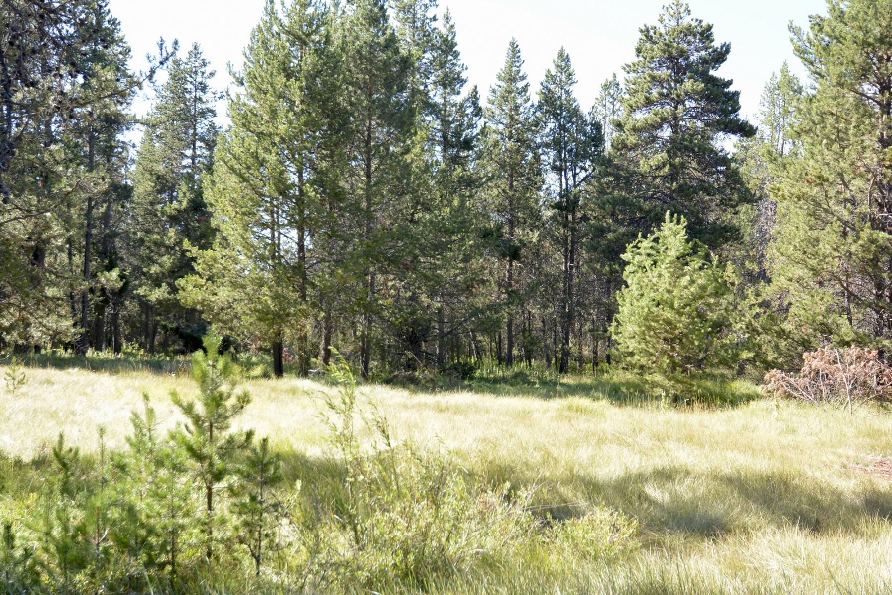 Terreno por un Venta en 54691 Silver Fox Drive, BEND Bend, Oregon, 97707 Estados Unidos