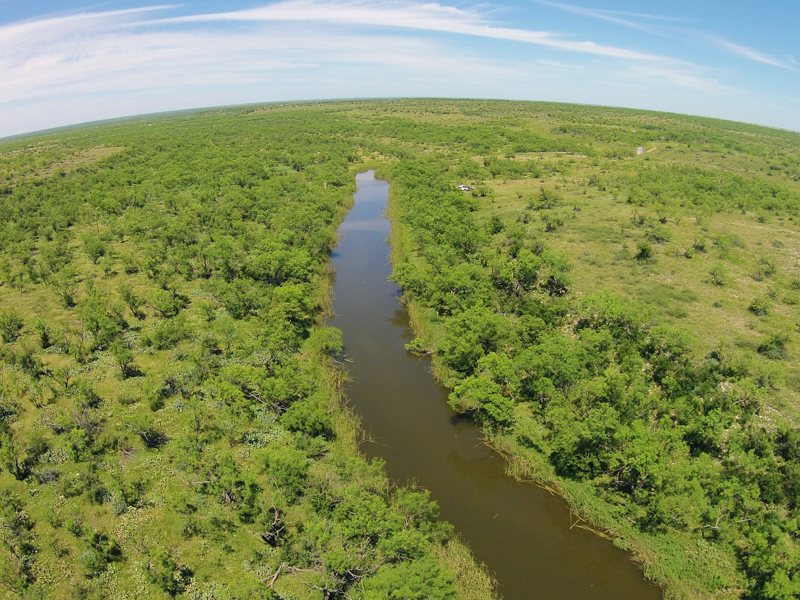 sales property at 743± Acres Hackberry Ranch - Runnels County