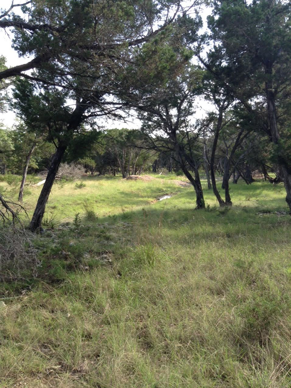 Additional photo for property listing at Hill Country Lot in Cordillera Ranch Lot 52 Granadilla Boerne, Texas 78006 Estados Unidos