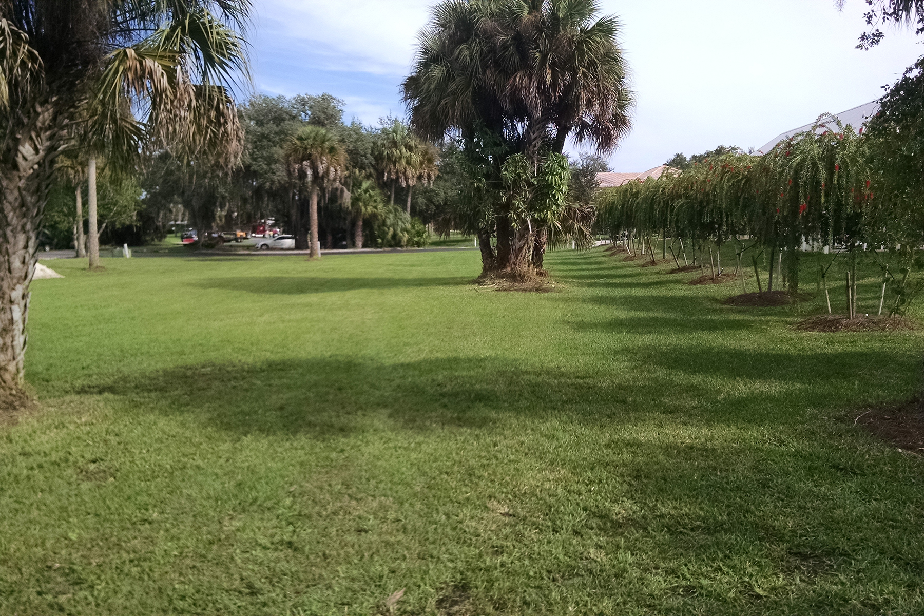 Land for Sale at 16420 Oakview Cir , Alva, FL 33920 16420 Oakview Cir, Alva, Florida 33920 United States