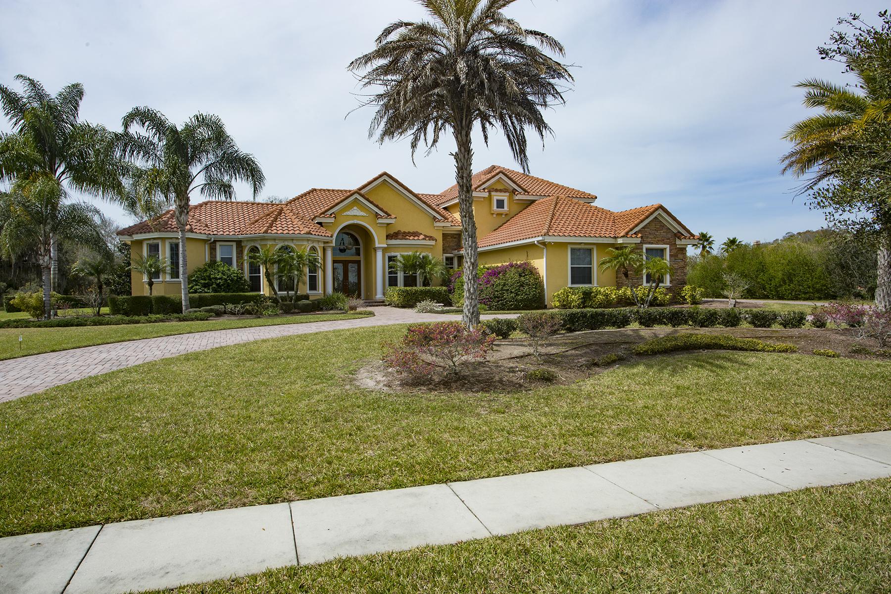 단독 가정 주택 용 매매 에 LUTZ 19624 Amazon Basin Lutz, 플로리다, 33559 미국