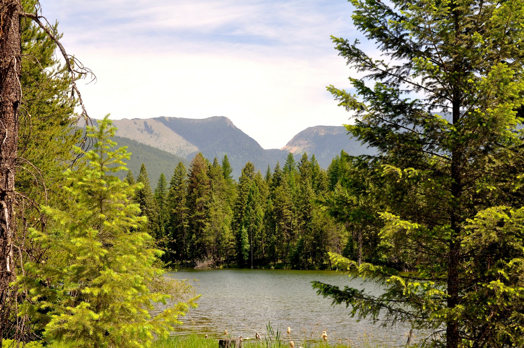 Additional photo for property listing at Nhn Glen Lake Rd , Eureka, MT 59917 Nhn  Glen Lake Rd Eureka, Montana 59917 United States