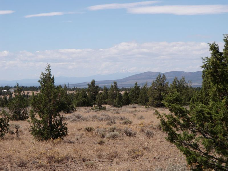 Land for Sale at Juniper Canyon TL 105 Juniper Canyon Rd Prineville, Oregon 97754 United States