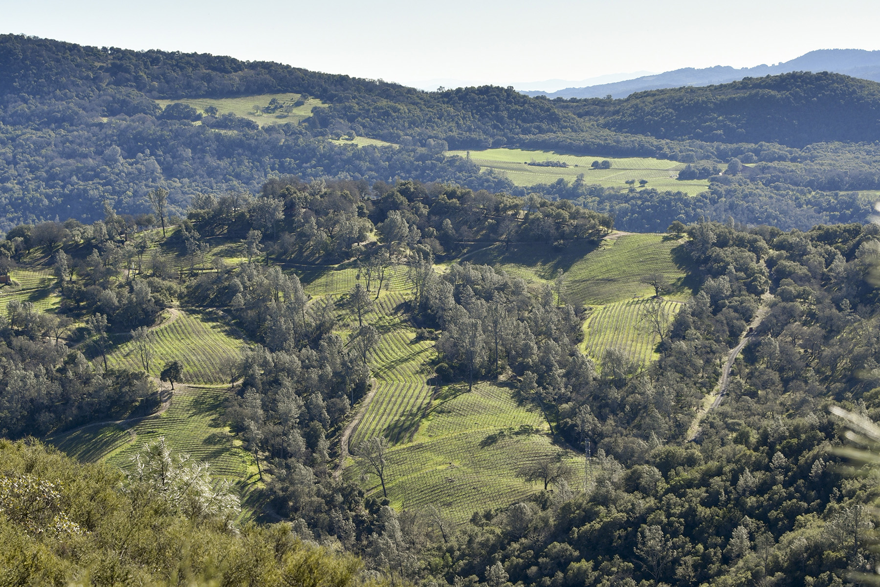 Other Residential for Sale at 0 Lower Chiles Valley Rd, St. Helena, CA 94574 0 Lower Chiles Valley Rd St. Helena, California, 94574 United States