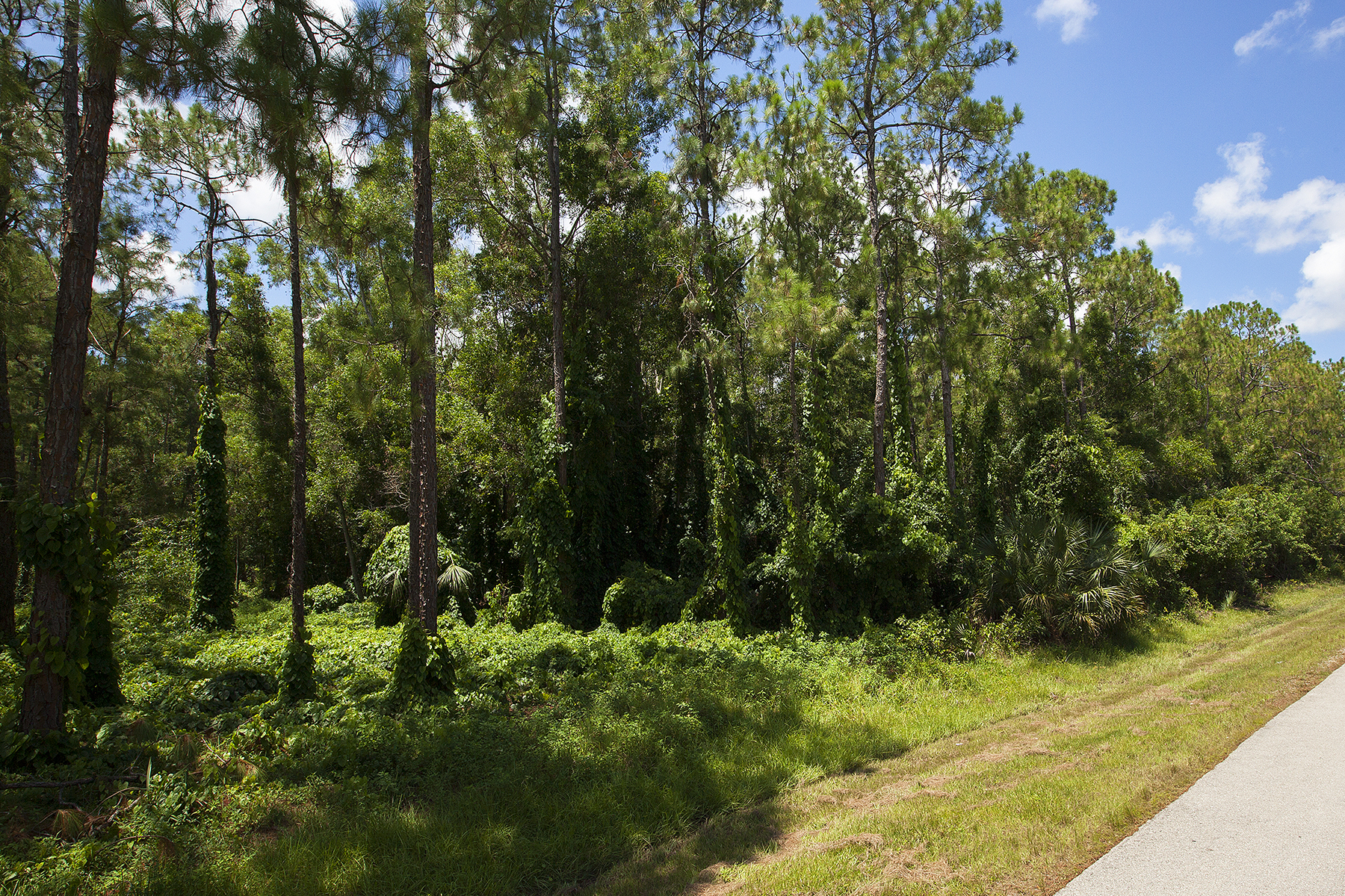 Land for Sale at 6658 Sandalwood Ln , Naples, FL 34109 6658 Sandalwood Ln Naples, Florida 34109 United States