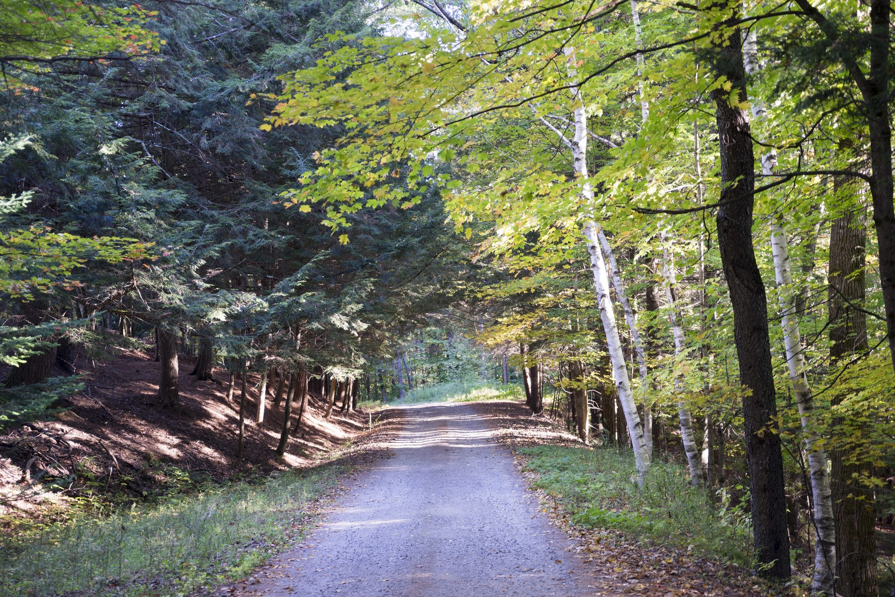 Land for Sale at 0 Edson Park Road, Stowe 0 Edson Park Rd Stowe, Vermont, 05672 United States