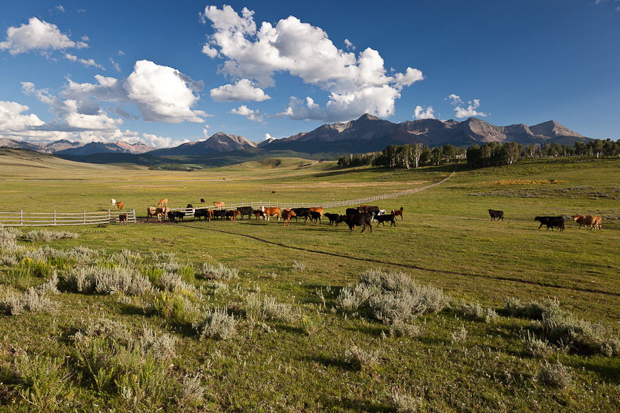 Ferme / Ranch / Plantation pour l Vente à Berman Buckskin Ranch 101 Buckskin Road Placerville, Telluride, Colorado 81435 États-Unis