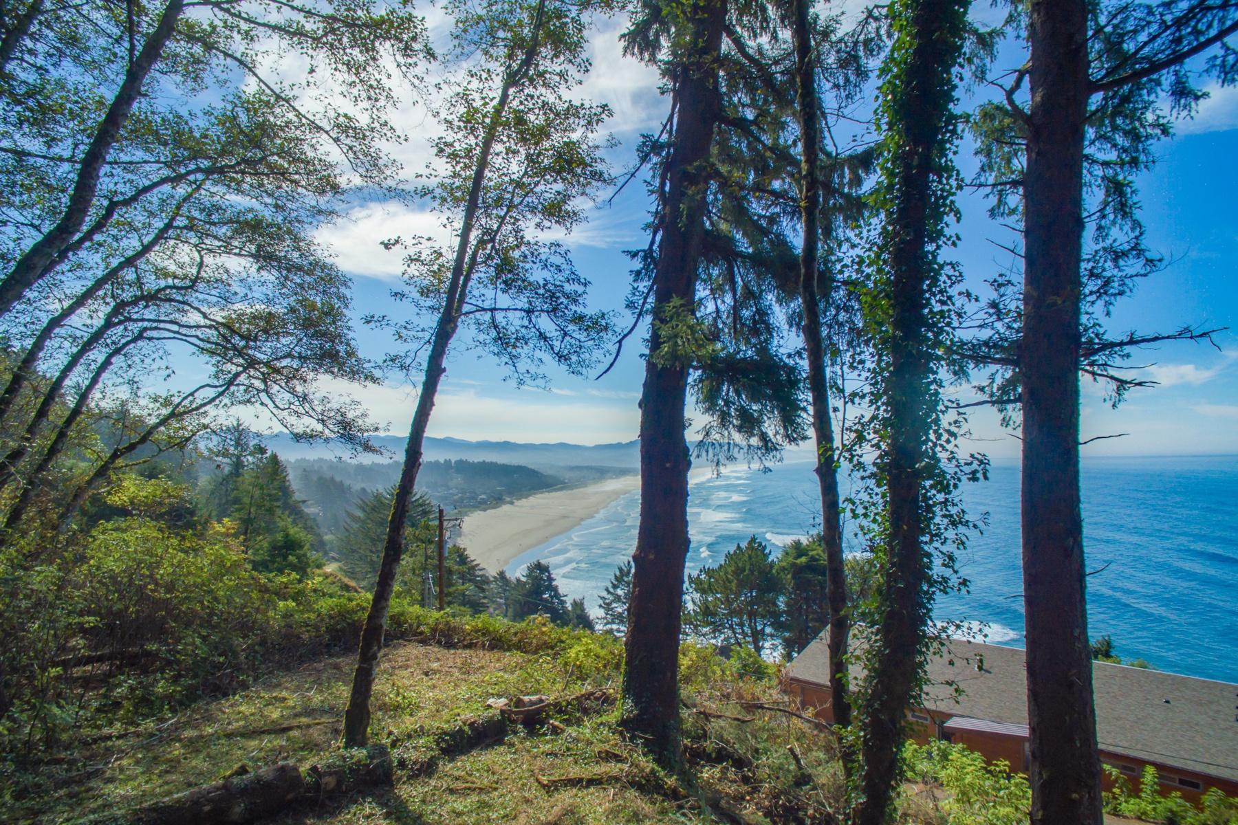Đất đai vì Bán tại 38625 BEULAH REED RD, MANZANITA, OR Manzanita, Oregon 97130 Hoa Kỳ