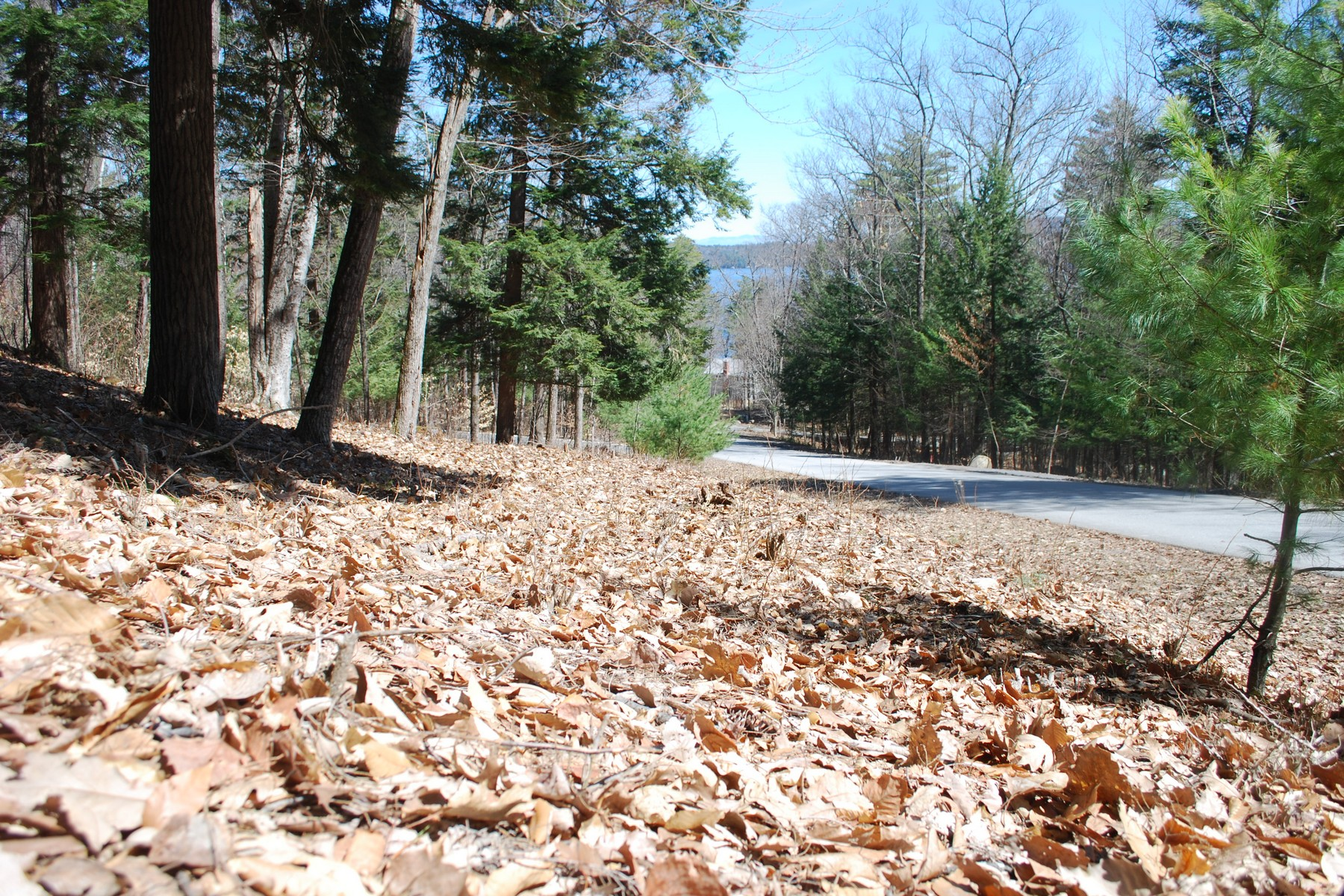 Additional photo for property listing at Pine Orchard Road 00  Pine Orchard Hague, New York 12836 United States