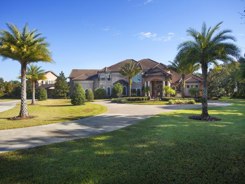 Maison unifamiliale pour l Vente à HAMMOCK OAKS RESERVE 11438 Hammock Oaks Ct Lithia, Florida 33547 États-Unis