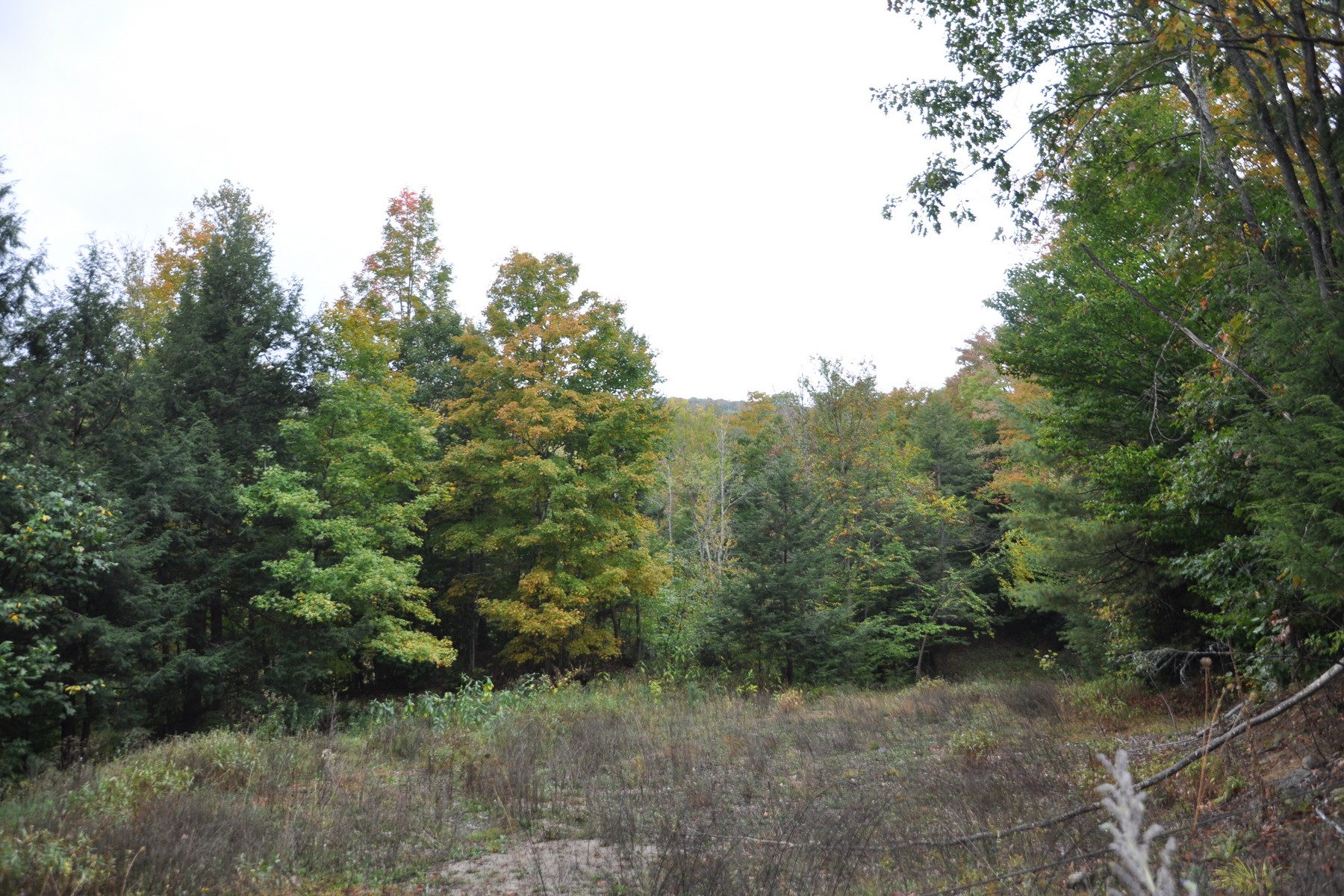 Terrain pour l Vente à 177+ Acre Parcel With 2 Acre Cleared Building Site 45 Valley Rd Thurman, New York 12810 États-Unis