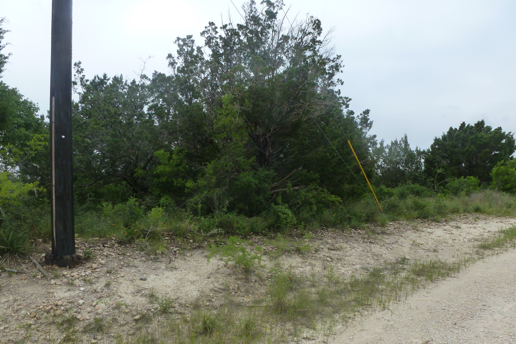 Additional photo for property listing at Fantastic Lot in Selma Lot 12 Ventura Selma, Texas 78154 Estados Unidos