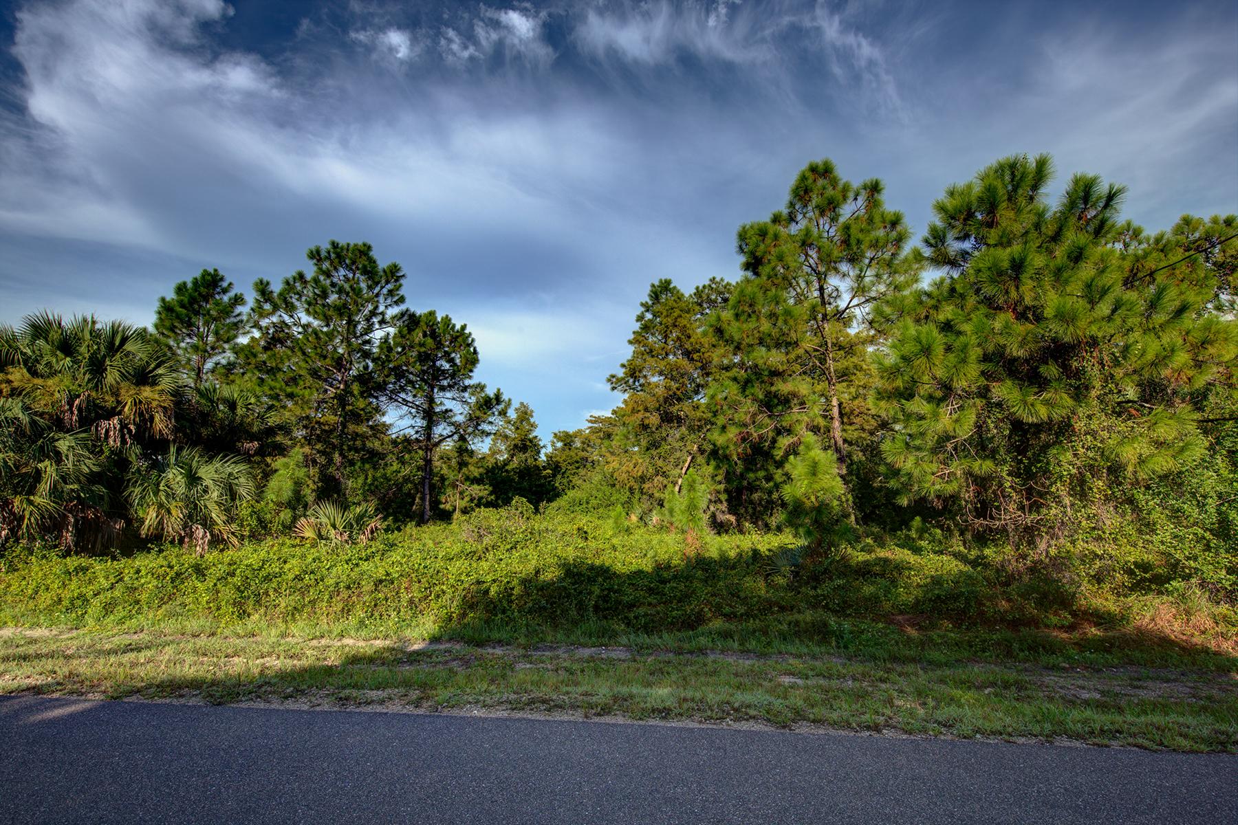 Terrain pour l Vente à GOLDEN GATE ESATES 16th St SE Naples, Florida 34117 États-Unis
