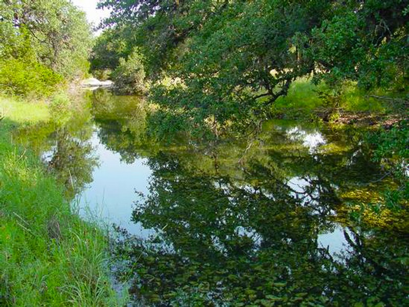Property For Sale at 431± Acre Shut-In Creek Ranch