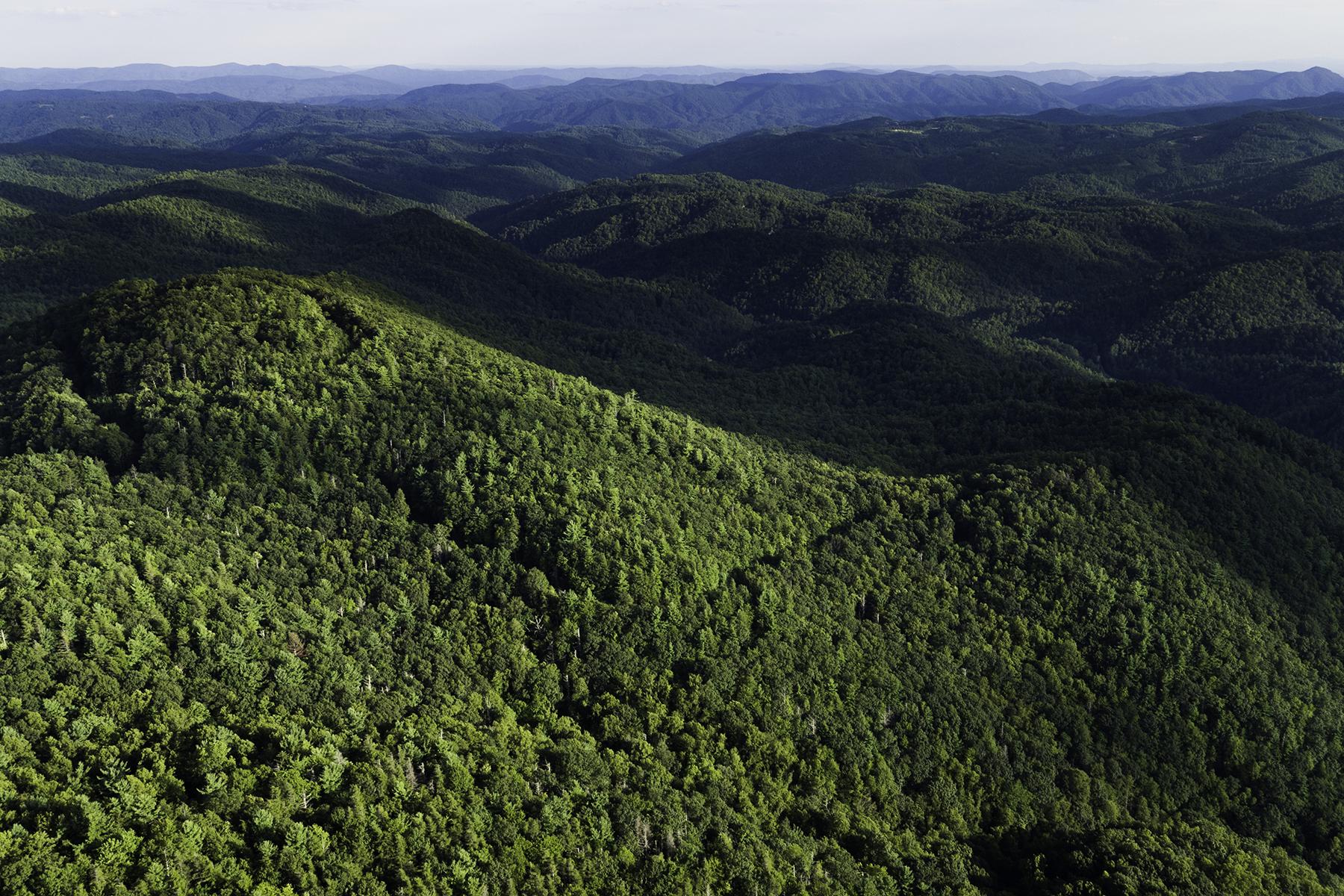 Additional photo for property listing at DEEP GAP TBD  Wildcat Road,  Deep Gap, North Carolina 28618 United States