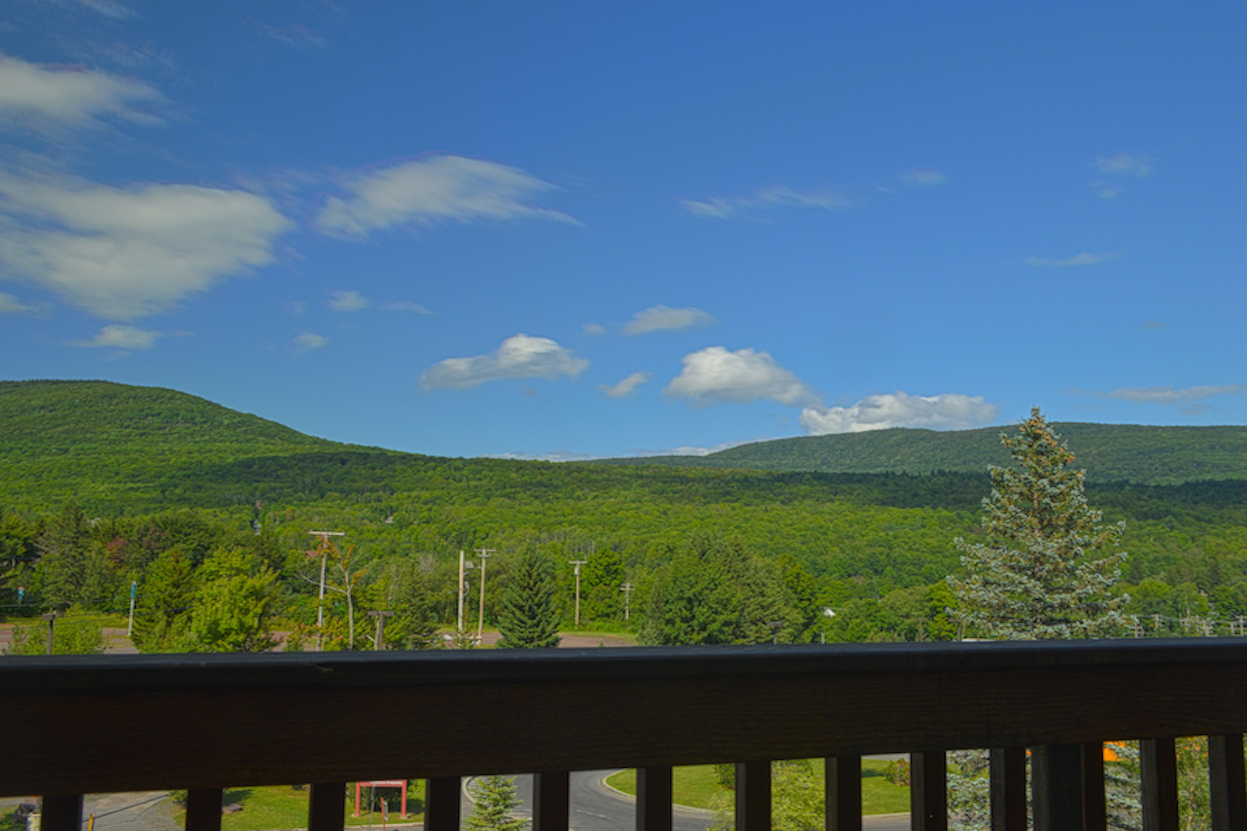 Additional photo for property listing at Luxury Hunter Mountain Duplex 504  Klein Ave Hunter, New York 12442 United States