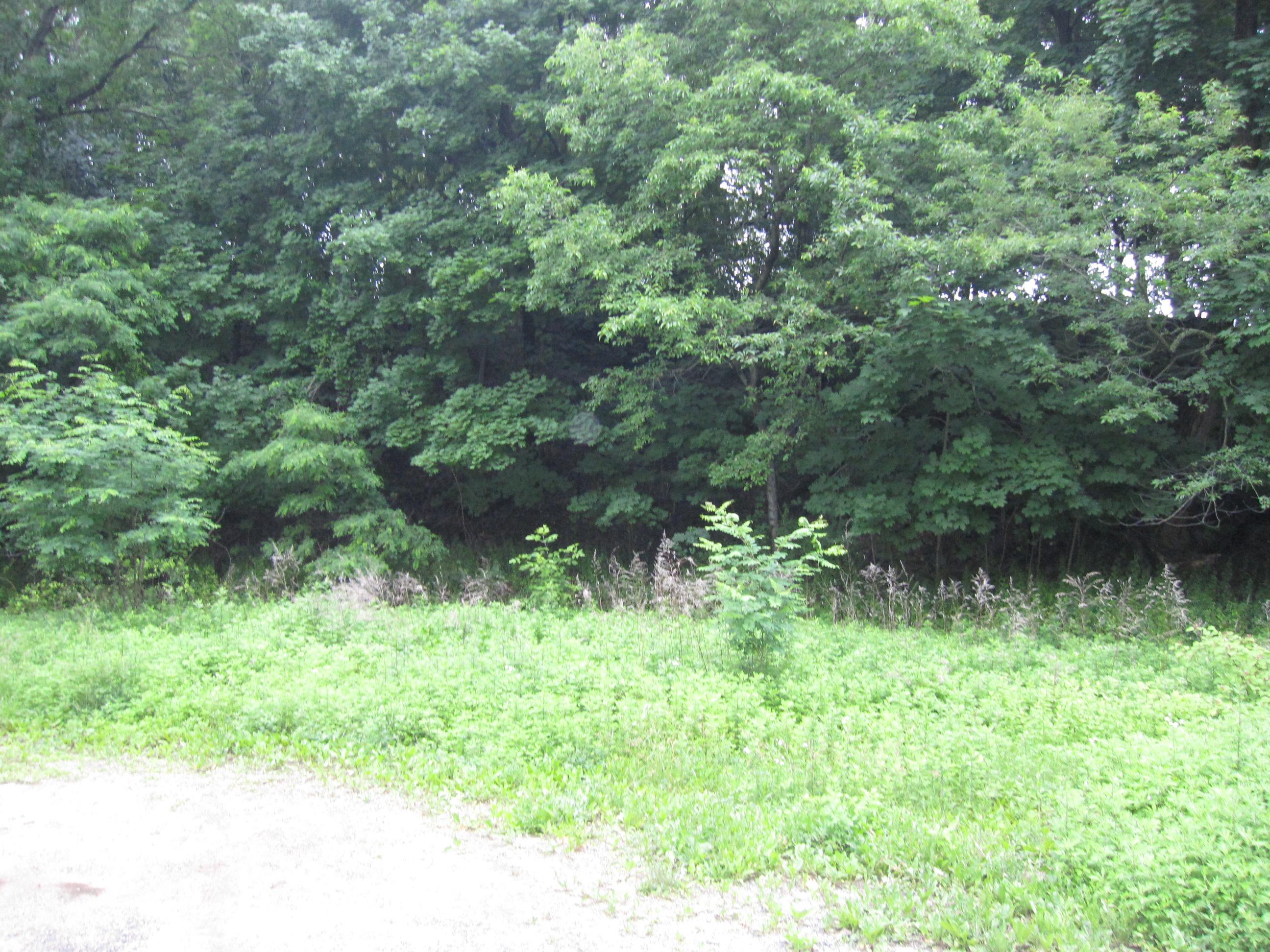 토지 용 매매 에 Land 10 Nicholas St Port Jefferson, 뉴욕 11777 미국