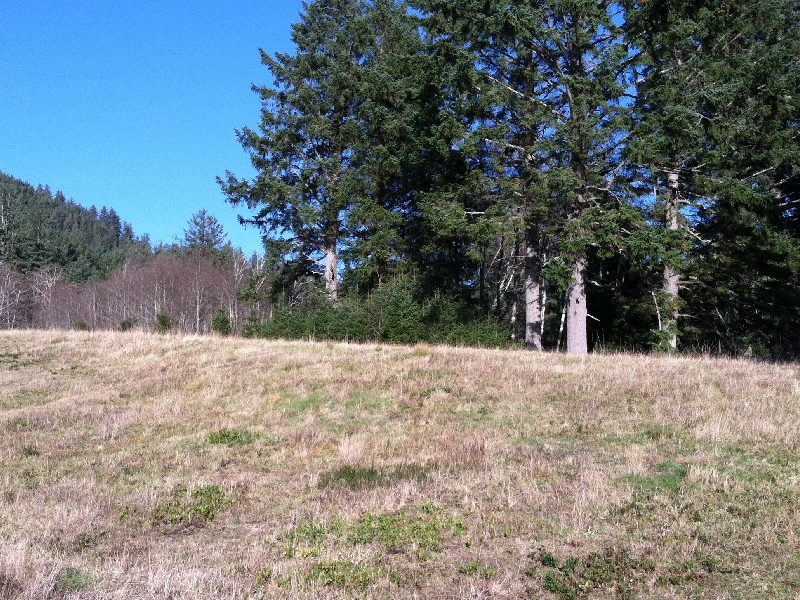 Đất đai vì Bán tại Large Neahkanie Meadow Lot Braeridge Dr Manzanita, Oregon 97130 Hoa Kỳ