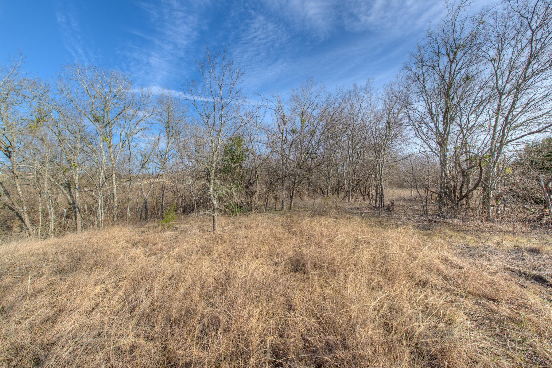 Additional photo for property listing at Creekfront Setting 3920 Dacy Ln Buda, Texas 78610 Estados Unidos