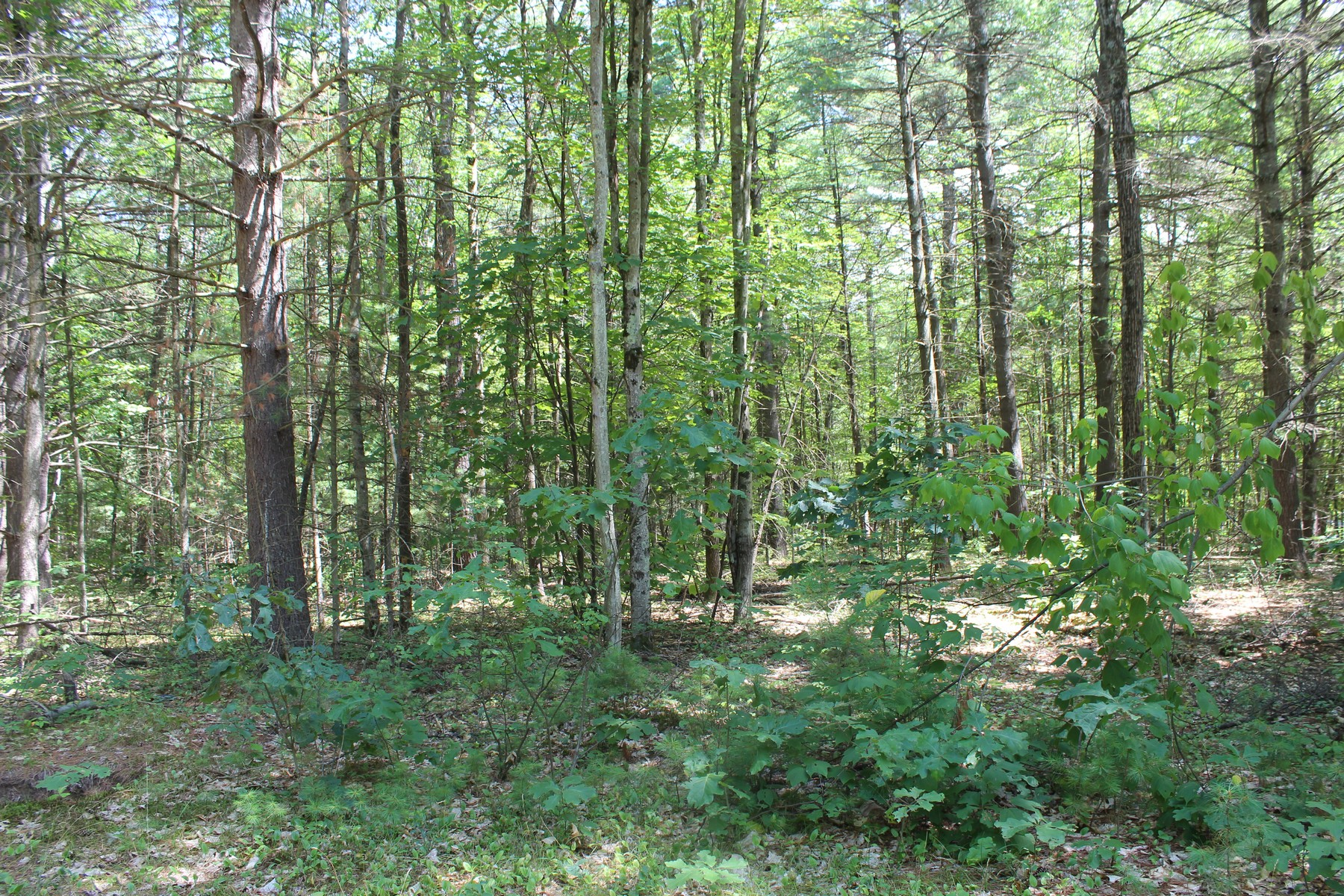 Additional photo for property listing at Southwoods Subdivision Southwoods Rd Fort Edward, New York 12828 États-Unis