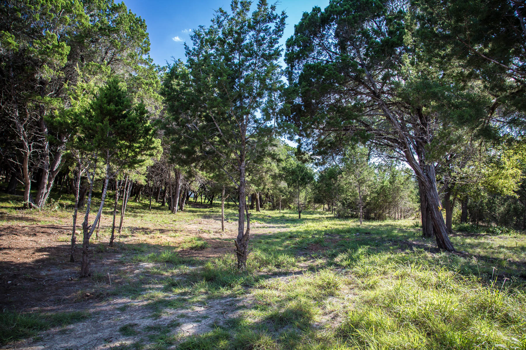 Additional photo for property listing at Lot in John Newcome Estate & Country Club 826 Gumnut Grove New Braunfels, Texas 78132 Estados Unidos