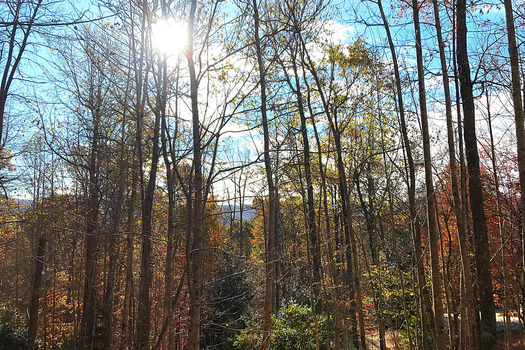 Land for Sale at OLETA FALLS 527 Overlook Park Dr 78 Phase II Hendersonville, North Carolina, 28792 United States
