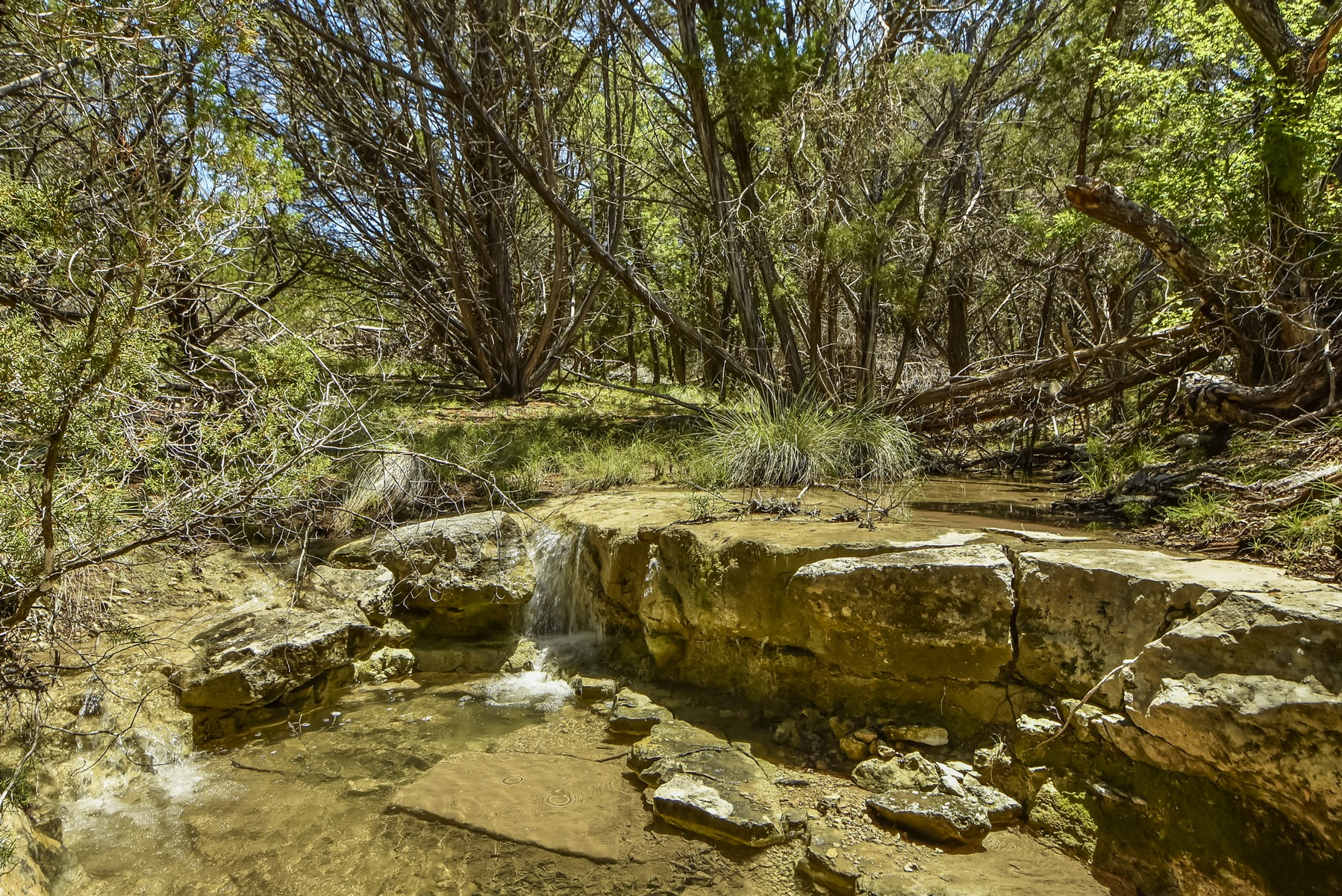 Land for Sale at Gorgeous lot with Views and Access to Creek 747 Rocky Creek Rd Dripping Springs, Texas 78620 United States