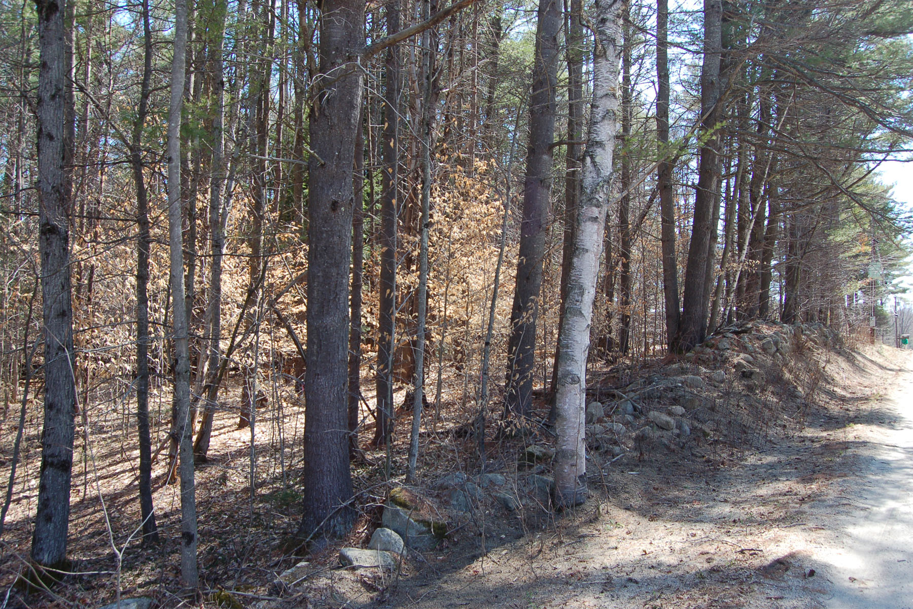Terreno per Vendita alle ore Ideal Building Lot Burpee Hill Rd New London, New Hampshire, 03257 Stati Uniti