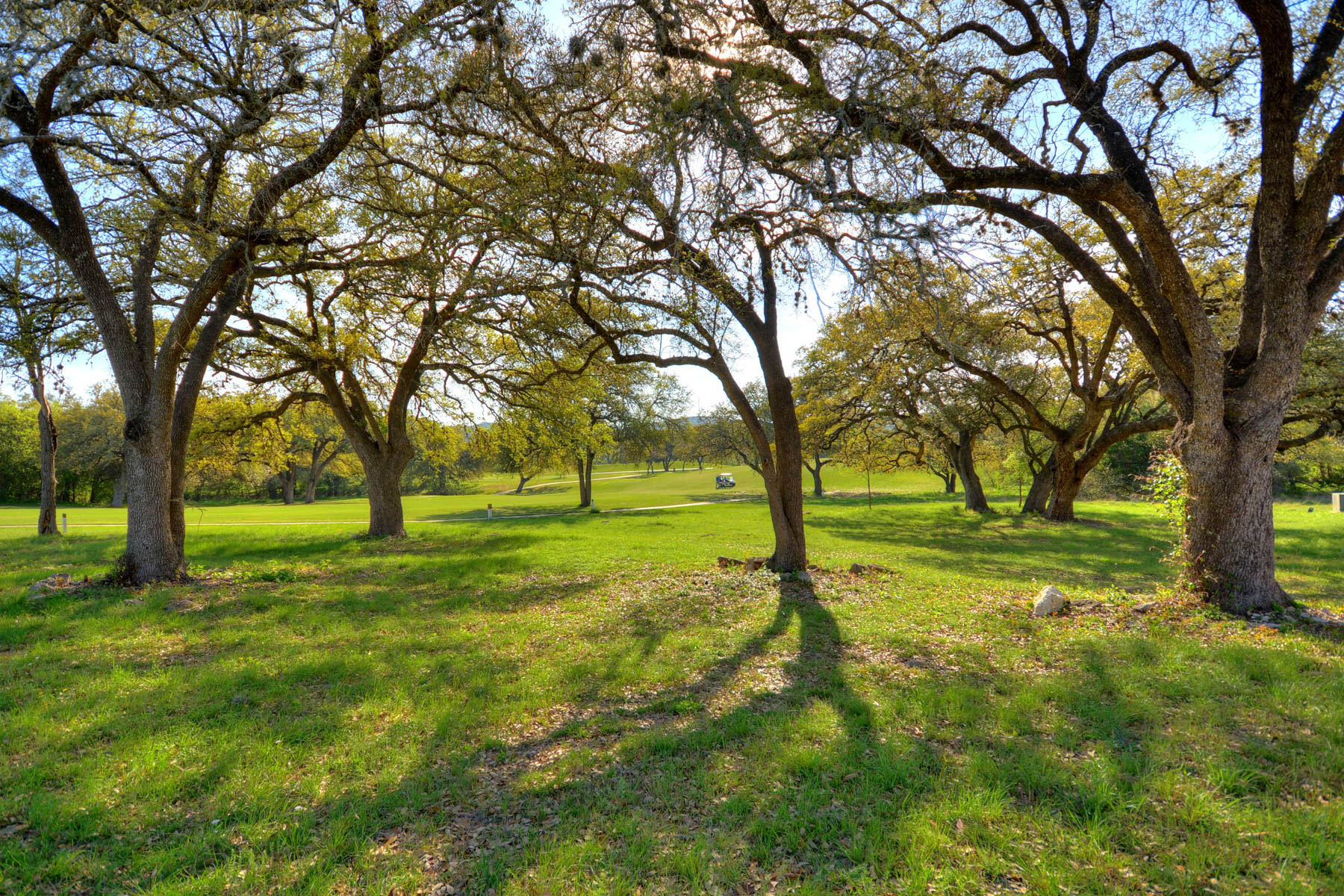 Additional photo for property listing at Exciting Opportunity in The Dominion 18 Chaumont San Antonio, Texas 78257 Estados Unidos