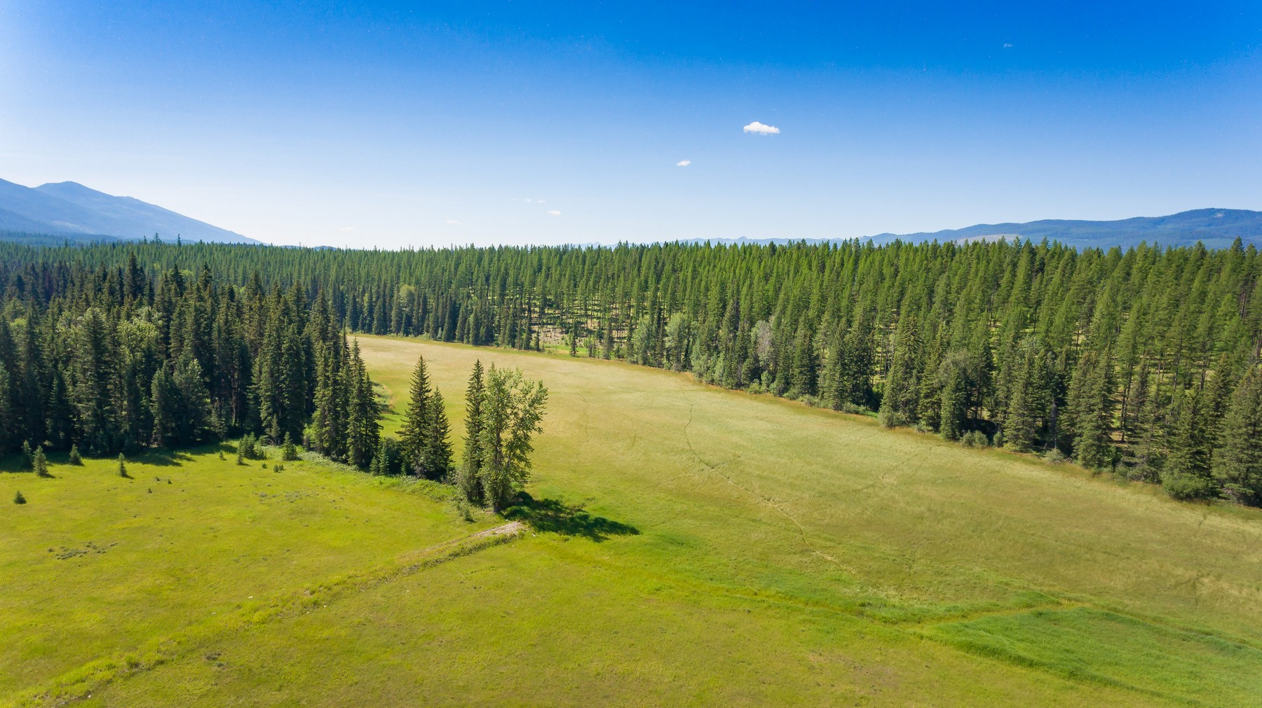 Additional photo for property listing at Nhn Lost Creek Road, 100 Acres, Swan Lake, MT 5991 Nhn  Lost Creek Rd 100 Acres Swan Lake, Montana 59911 United States