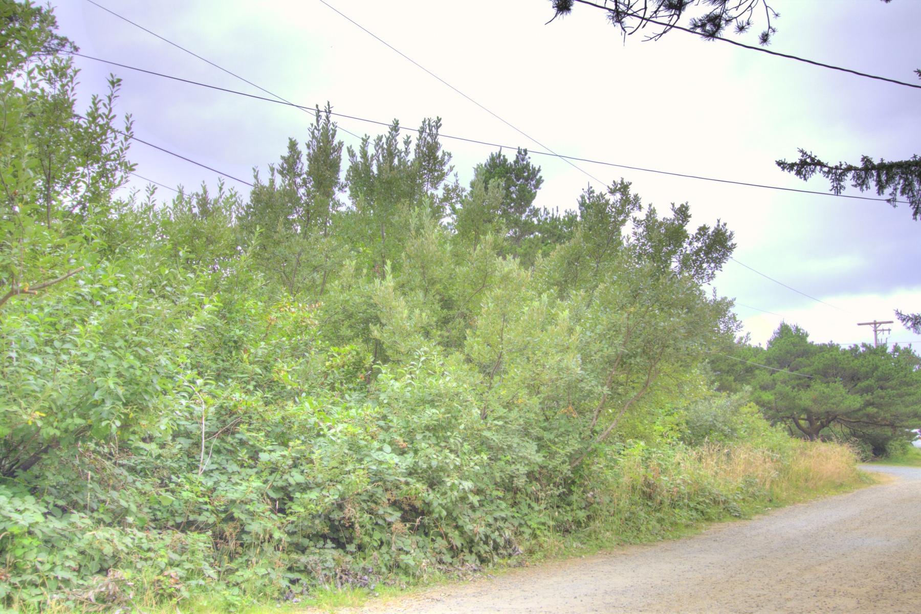 Land for Sale at Windward LN 101, MANZANITA Manzanita, Oregon, 97130 United States
