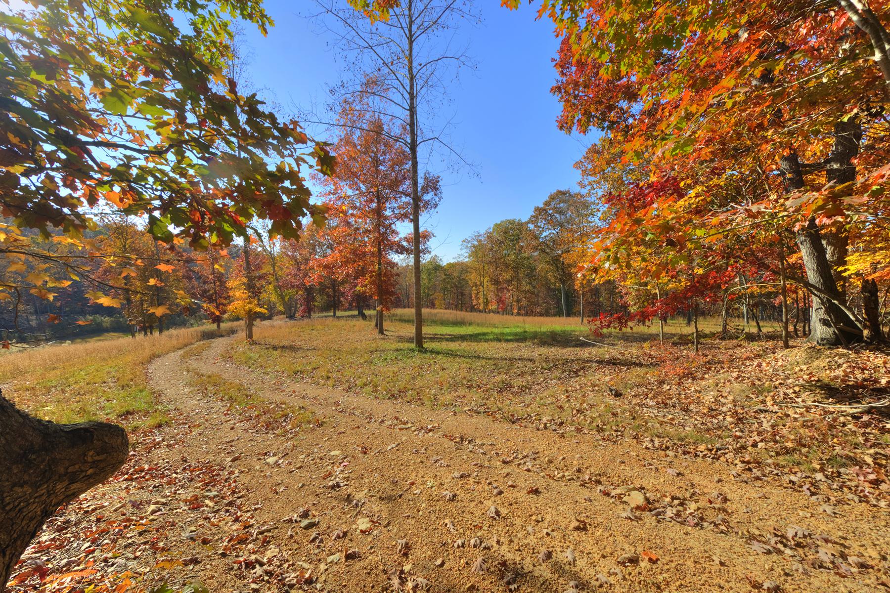 Terreno para Venda às LAKE SHORE 369 Lakeshore Dr New London, Carolina Do Norte, 28127 Estados Unidos