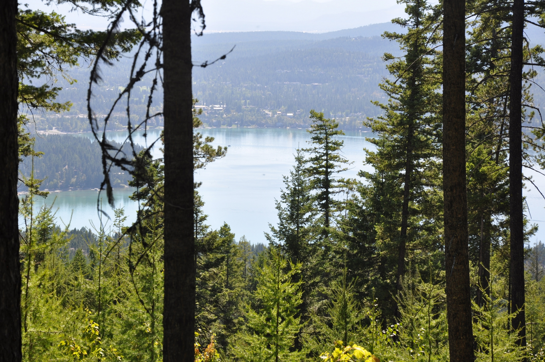 Land for Sale at 238 S Beargrass Cir , Whitefish, MT 59937 Whitefish, Montana, 59937 United States