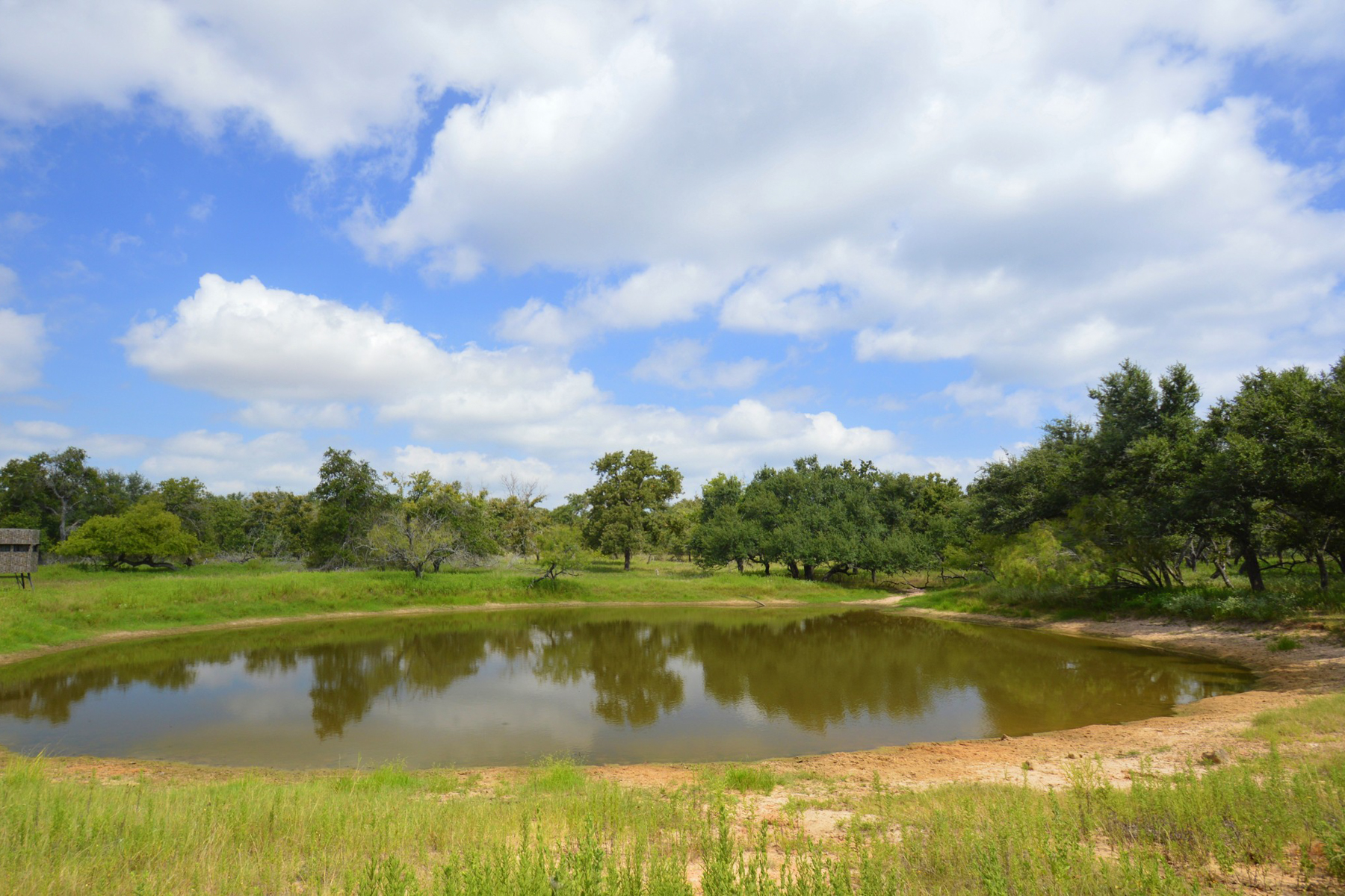 Ferme / Ranch / Plantation pour l Vente à 717± Acres Leprechaun Ranch 717+- AC - Bexar-Atascosa Co nty San Antonio, Texas, 78224 États-Unis