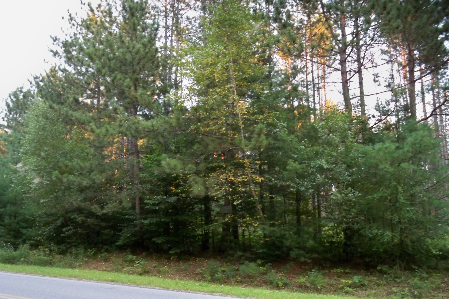 Additional photo for property listing at Squashville Lots 141  Squashville Rd Greenfield, Nueva York 12833 Estados Unidos