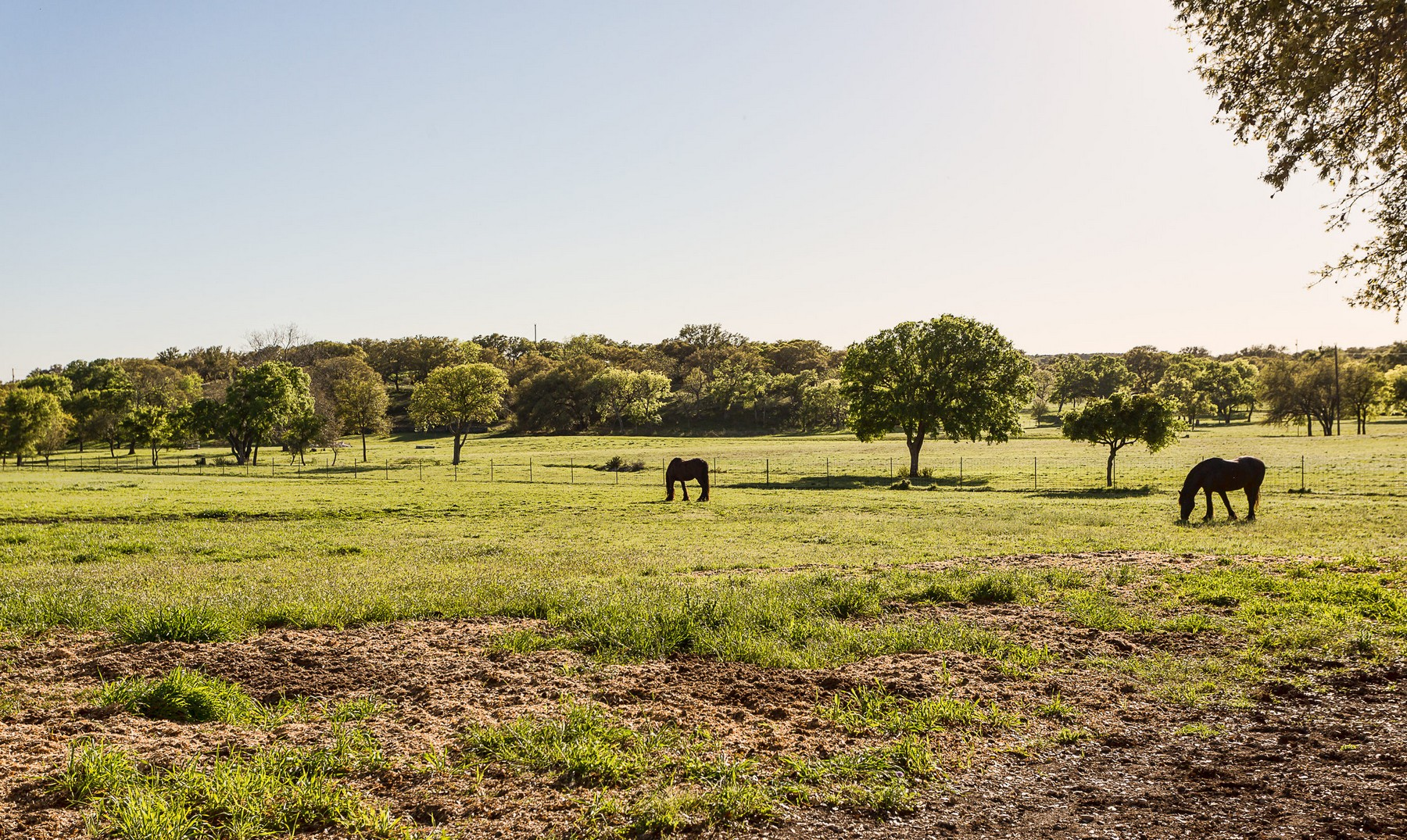 Farm / Ranch / Plantation for Sale at The Beautiful WR Ranch 301 Longhorn Trl Wimberley, Texas 78676 United States