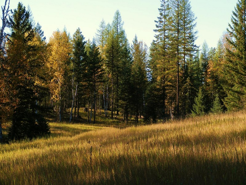 Additional photo for property listing at Jewel Basin 4520  Foothill Rd Bigfork, Montana 59911 United States