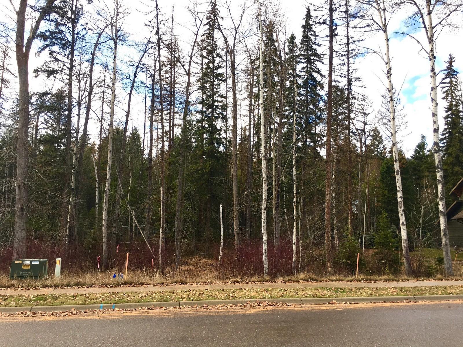 Terreno por un Venta en 1050 Meadowlark Ln , Whitefish, MT 59937 1050 Meadowlark Ln Whitefish, Montana, 59937 Estados Unidos