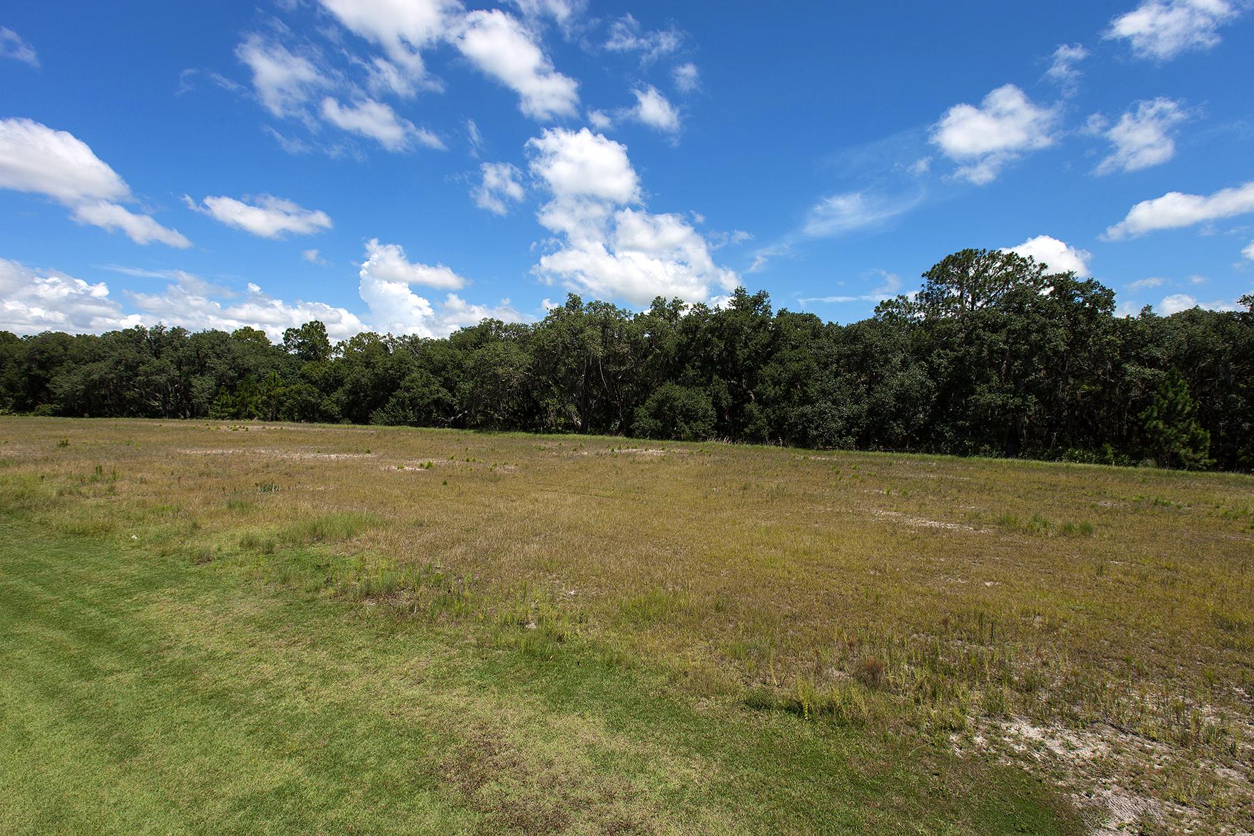 Terreno por un Venta en CONCESSION 19431 Beacon Park Pl 9 Lakewood Ranch, Florida, 34202 Estados Unidos